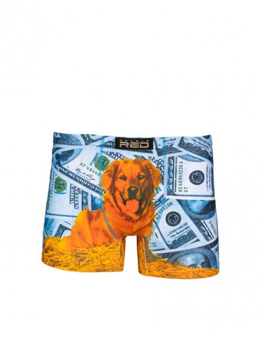 2FUN Boxers Dolar Dog Blue